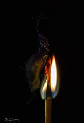 The Flame, the Splash and the #Black (nicoheinrich86) Tags: fotomontage black flamme feuer fire splash 52of2017 flame water watersplash