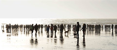 Yule tides (Andy WXx2009) Tags: seascape seaside beach crowd landscape shoreline shadows silouhettes people charityswim porthcawl xmas bristolchannel artistic dogs wales europe sky figures streetphotography candid