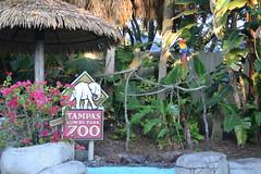 Tampa Zoo Sign 15/12/16 (s.kosoris) Tags: skosoris nikond3100 d3100 nikon tampa tampazoo sign bird macaw