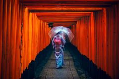 Kyoto (Cheng Yang, Chen) Tags: kyoto rain streetshot japan 京都 伏見稻荷 伏見 鳥居