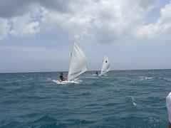 234-DSCN9849 (eric15) Tags: sea beach water race cat for boat eva surf sailing wind offshore sailors luna aruba international dash sail regatta sailor optimist sunfish oranjestad surfside