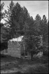Ruins in the woods (Franco & Lia) Tags: sardegna blackandwhite film analog ruins sardinia noiretblanc apx100 epson agfa rodinal abandonment biancoenero argentique rovine pellicola abbandono analogico v500 tempiopausania limbara nikonl35af2 aph09