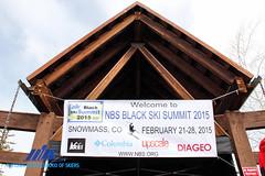 2015 NBS Picnic