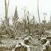 Guam USMC Photo No. 1-12