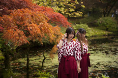 Japanese Garden in Clingendael Park, The Hague (lienete) Tags: park autumn trees girls red people holland netherlands leaves portraits garden outdoors japanese japanesegarden pond women couple hague thehague traditionaldress glamourgirls clingendael clours japanesewomen japanesetraditionaldress clingendaelparkthe