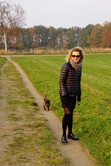 Tina and Otto (osto) Tags: dog pet animal denmark europa europe sony terrier zealand otto scandinavia danmark cairnterrier slt a77 sjlland osto alpha77 osto october2015