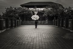 catherinesmith_5_zoo (catherineLsmith) Tags: bridge columbus ohio girl rain umbrella zoo alone unitedstates time empty closing drizzle