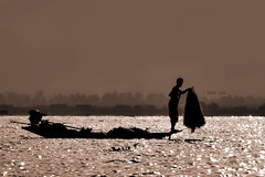 I lake you (Saint-Exupery) Tags: leica sepia burma myanmar inlelake birmania lagoinle