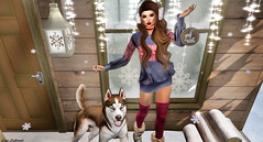 Designer Showcase: Mr. Winter, Did You Miss Her? (Hanna Luna Naimarc: MVD 2016 & MVW Chile 20) Tags: designershowcase clothes fashion kc baxe poses winter snow cozy cabin thighhigh socks husky dog event new december cold christmas santa boots weather