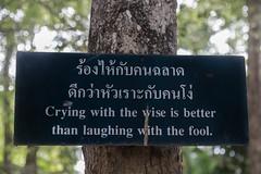 2016/07/23 15h45 sentence bouddhiste (Wat Phra Singh) (Valéry Hugotte) Tags: chiangmai thailand thaïlande watphrasingh inscription pancarte panneau sentence temple