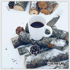ice blue . snow winter . #garfield va MM77 # aRT . 77  #suskun #Taro 22 . @sen.varken . #aztagram #AYDIN ♏ #афоризм #aforizm #özdeyiş (okaykamaci) Tags: афоризм aztagram garfield özdeyiş aforizm taro aydin suskun