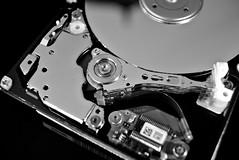 Contraption: Hard Disk Head Stack (G. Lang) Tags: forêtnoirebw25monochromecontraptionmakro2 5zollmacromondayseinfarbigblackwhiteschwarzweisfestplatteneewerautomaticextensiontubeset16mmblackandwhitemacroharddiskbranchesnoiretblanc macro macromondays contraption harddisk festplatte
