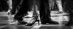 Pasos de Tango no. 1 -Glorieta de Belgrano- (Buenos Aires, Argentina. Gustavo Thomas © 2017) (Gustavo Thomas) Tags: tango feet foot shoes dance belgrano humans traditions buenosaires argentina monochrome monocromático blancoynegro blackandwhite bnw baile popular traditional