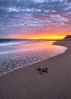 Leo Carrillo State Beach (Eric Zumstein) Tags: starfish leocarrillostatebeach malibu california unitedstates us sunset sky ocean nature landscape seascape
