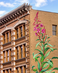 Nature Will Win (Ian Sane) Tags: ian sane images naturewillwin urbanmacroherbarium weeds fireweed mural monacaron artist southwest 3rd avenue alder street downtown portland oregon canon eos 7d camera ef70200mm f28l is usm lens