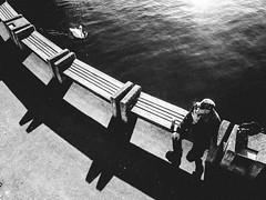 yin yang (matthias hämmerly) Tags: water lake zuerich swan man smoke winter sunny shadow grain contrast ricoh grd 2 street candid
