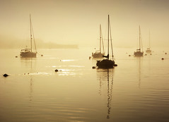 Misty morning on the Tamar (jamiegaquinn) Tags: tamar river rivertamar yacht yachts reflections mist misty boat saltash