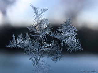 Ephemeral beauty of winter