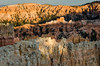 Bryce Canyon Sundown - detail (canyons_2013_0728) (ronnie.savoie) Tags: brycecanyon brycecanyonnationalpark canyon desert landscape utah