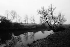Waking Hour (JamieHaugh) Tags: clevedon northsomerset england sony a6000 outdoors blackandwhite blackwhite monochrome bw trees river riverbank morning reflection uk nature britain