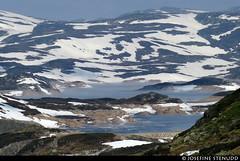 20160607_03 Fog-covered lake Rosskreppfjorden, Norway (ratexla) Tags: ratexla'snorwaytrip2016 norway 7jun2016 2016 canonpowershotsx50hs norge scandinavia scandinavian europe beautiful earth tellus photophotospicturepicturesimageimagesfotofotonbildbilder europaeuropean summer travel travelling traveling norden nordiccountries roadtrip wanderlust journey vacation holiday semester resaresor landscape nature scenery scenic ontheroad sommar favorite