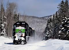 Winter wonderland (Michael Berry Railfan) Tags: sociétéduchemindeferdelagaspésie sfg gaspesie quebec winter snow windmilltrain train freighttrain sfg1819 mlw alco montreallocomotiveworks