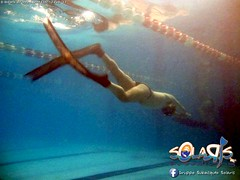 """02 febbraio 2017 - Prove sub & Freediving... • <a style=""""font-size:0.8em;"""" href=""""http://www.flickr.com/photos/138167729@N03/32659383131/"""" target=""""_blank"""">View on Flickr</a>"""