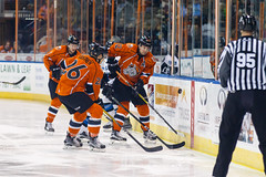 "Missouri Mavericks vs. Wichita Thunder, February 3, 2017, Silverstein Eye Centers Arena, Independence, Missouri.  Photo: John Howe / Howe Creative Photography • <a style=""font-size:0.8em;"" href=""http://www.flickr.com/photos/134016632@N02/32713948175/"" target=""_blank"">View on Flickr</a>"