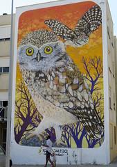 541-July'16 (Silvia Inacio) Tags: graffiti streetart quintamocho sacavém lisboa lisbon portugal owl coruja charquipunk