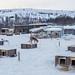 Dogyard at Kirkenes snow hotel