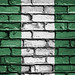 National Flag of Nigeria on a Brick Wall