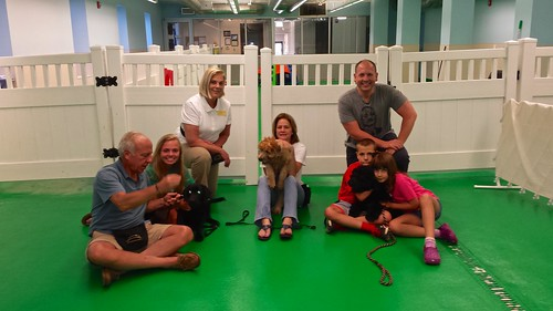 "Puppy Head Start, Session J, Summer 2015-Wed; Class Photo-01 • <a style=""font-size:0.8em;"" href=""http://www.flickr.com/photos/65918608@N08/20283392293/"" target=""_blank"">View on Flickr</a>"