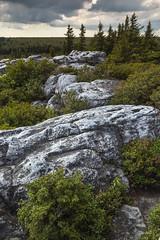 dolly sods 2015 (photo_scott) Tags: portrait sky west nature canon landscape virginia rocks wv dolly sods 60d