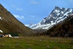 Swargarohini Peak, view from Har-Ki-Doon Valley (Soumya Ganguly) Tags: travel snow trek tent hkd worldphotographyday yhai irsh uttarkashi harkidoon uttarakhand swargarohinipeak