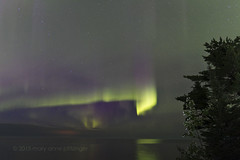 Veiled Dance on Lake Superior (maryanne.pfitz) Tags: camping trees storm nature weather stars landscape photo pines nightsky lakesuperior northernlights auroraborealis bigdipper uppermichigan ahmeek keweenawcounty sunsetbaycampground maryannepfitzinger mapab2480
