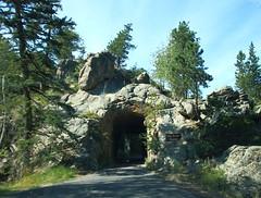 Iron Creek Tunnel throuigh Rock Formation along Needles Highway - Custer State Park in Black Hills Region of South Dakota (danjdavis) Tags: southdakota blackhills tunnel needles custerstatepark rockformations needleshighway southdakotastatepark ironcreektunnel gelologicalformations
