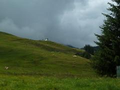 (sergei.gussev) Tags: wildschönau republic austria republik österreich tyrol tirol kufstein bezirk district niederau oberau auffach thierbach kitzbüheler alpen kitzbühel alps kitzbühler roskopf marchbachjoch
