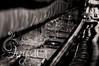 DSC_0510bw © Ivy & Ice Photography (BlueIvyPortraits) Tags: family portrait white black color ice digital photography photo nikon photographer image lifestyle ivy event photograph tamron alivia houdek d5000 ivyandice