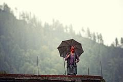 Under an umbrella (f/4) Tags: india manali cannabis himachal tosh kullu hashish pradesh charas parvati
