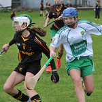 Camogie 2015