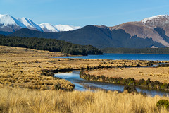 South Mavora Lake ll (fate atc) Tags: newzealand lake snow mountains water landscape bush scenery nz southisland teanau tussock southland highcountry fiordland beechforest southmavoralake sonya99