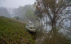 river Kupa (15) - foggy morning (Vlado Ferenčić) Tags: fog boat croatia rivers hrvatska foggymorning riverkupa nikond600 nikkor2485284