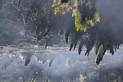 Otros Mundos II (Javi Diez Porras) Tags: cantabria cuevas samano lacubilla