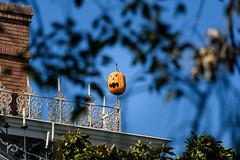 20151008_Disneyland_151 (petamini_pix) Tags: jackolantern disneyland hauntedmansion neworleanssquare