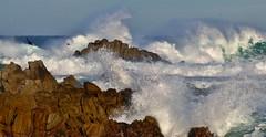 December1image6056 (Michael T. Morales) Tags: waves ptpinos