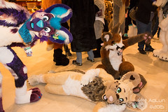 MFF2015-239 (AoLun08) Tags: costume furry convention anthropomorphic anthro mff fursuit mwff midwestfurfest fursuiter fursuiting mff2015 mwff2015 midwestfurfest2015
