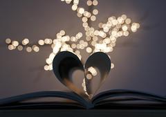 Un libro ben scelto ti salva da qualsiasi cosa, persino da te stesso. (Daniela Meacci) Tags: christmas tree bokeh book indoor libro natale albero interni