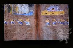 Codex_06