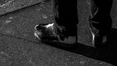 moo shoe    Fujifilm XT-2 (Patrick Casutt) Tags: shoe fuji fujifilm xt2 bw black best day streetphoto street candid cow live now 2016 2017