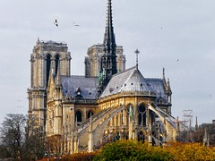 Lovely Notre Dame de Paris 🌟 (odeh3) Tags: quaideseine france architecture autumnseason autumncolors fallcolors couleursdautomne notredamedeparis paris
